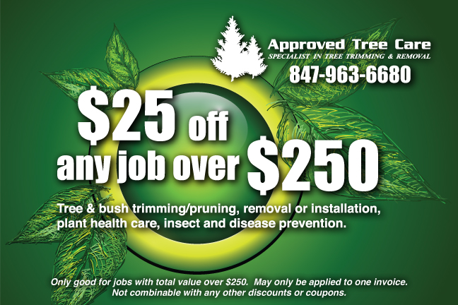Approved Tree Care - Coupon - Summer 2012