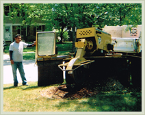 Approved Tree Care - Tree and Sump Removal