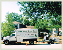 Approved Tree Care - Stump Removal - Chipper